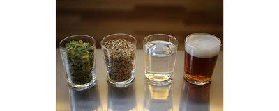 Beer brewing workshop image