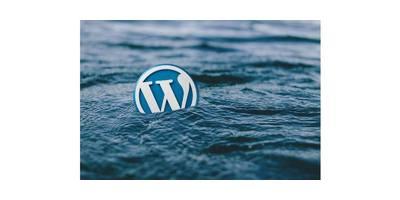 Zacznij blogować z Wordpress'em! image