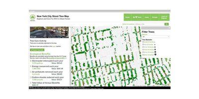 Maraton ratowania drzew. Tworzymy wirtualną mapę wycinek. image