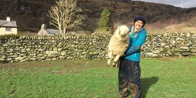 Do electric sheep get cold? image