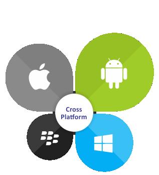Mobile Cross Platform image