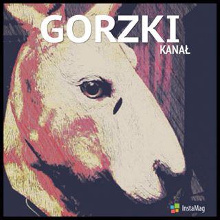 Gorzki/Kanał - Jako centrum prokrastynacji popkulturowej image